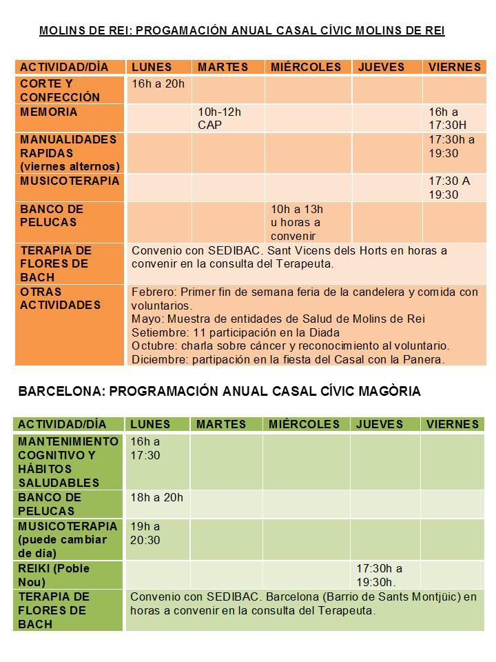 PICAM 05 02 16 - actividades centros 1